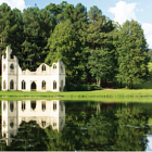 CPRE - AGM 21 June - with free entry to Painshill Park